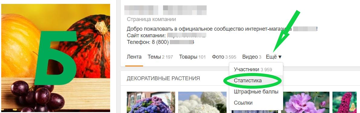 Статистика социальной сети «Одноклассники» — что пригодится для анализа